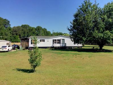 5071 State Line Rd, Cottonwood, AL 36320 - #: 169460