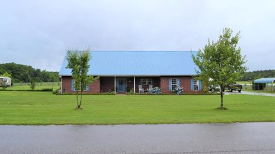 9751 S Rocky Creek Road, Cottonwood, AL 36320 - #: 169701