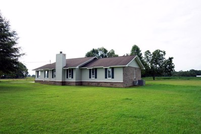 3208 State Highway 134 East, Headland, AL 36345 - #: 170050