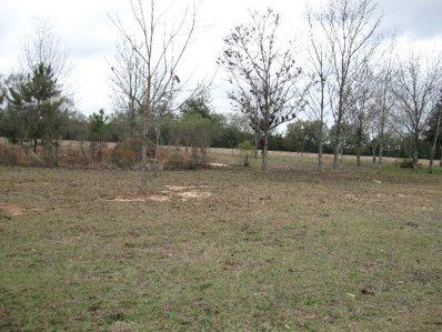 0 Lot 1 Block C Emerald Estate, Midland City, AL 36350 - #: 170254