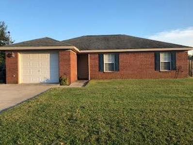 334 Joe Walding Drive, Midland City, AL 36350 - #: 170530