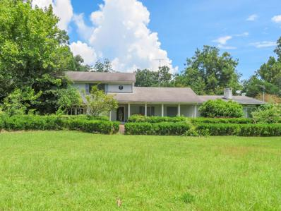 121 Lewis, Cottonwood, AL 36320 - #: 170611