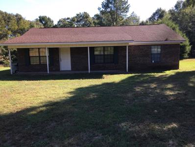 627 Mathews Ave, Ozark, AL 36361 - #: 171673
