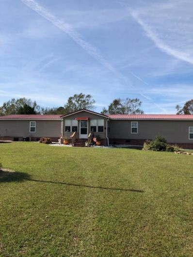 479 Otter Pond Road, Cottonwood, AL 36320 - #: 171706