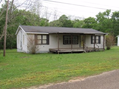 107 Bump Road, Webb, AL 36376 - #: 173334