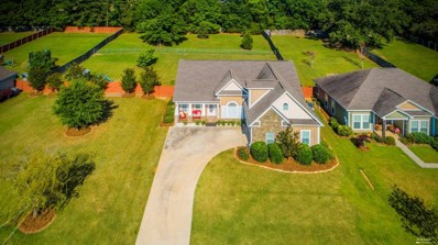 230 Weeping Willow Trail, Headland, AL 36345 - #: 173579