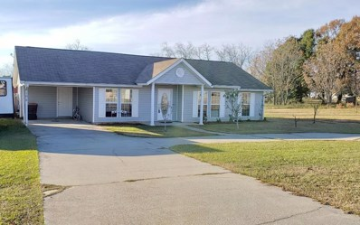 162 Borland Ave, Midland City, AL 36350 - #: 173731