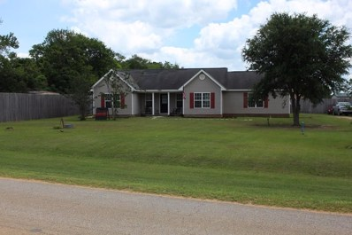 3681 County Road 13, Headland, AL 36345 - #: 174225