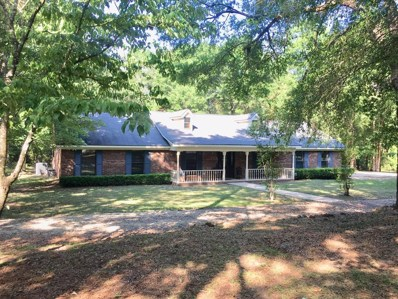 387 Deerfield Road, Newton, AL 36352 - #: 174367