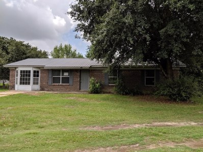 272 Hickory Court, Webb, AL 36376 - #: 174458