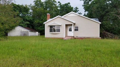 5849 State Highway 134 E, Headland, AL 36345 - #: 174760