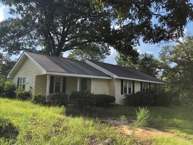 438 Jones Road, Newton, AL 36352 - #: 175038