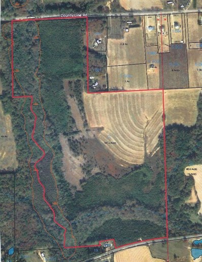 0 County Line Road, Slocomb, AL 36352 - #: 175077