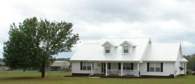 9115 S County Road 33, Dothan, AL 36301 - #: 175767