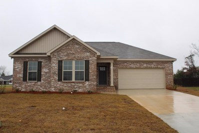 107 Canyons Court, Midland City, AL 36350 - #: 176581