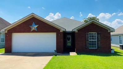 305 Powder Horn Drive, Midland City, AL 36350 - #: 178584