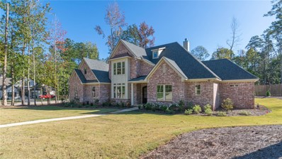 325 Hollytree Lane, Auburn, AL 36830 - #: 141959