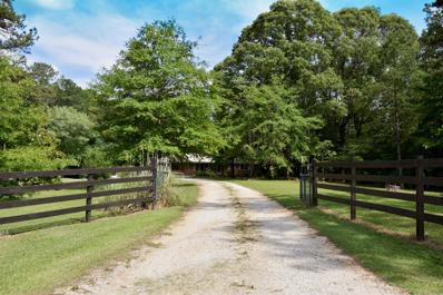 3251 County Road 91, Goodwater, AL 35072 - #: 19-773