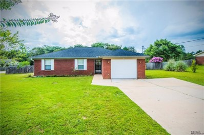 215 Elkwood Drive, Midland City, AL 36350 - #: 445394