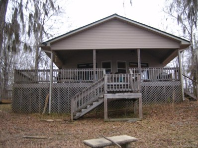 144 County Road 917 River, Minter, AL 36761 - #: 445722