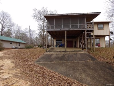 154 County Road 917 River, Minter, AL 36761 - #: 445731