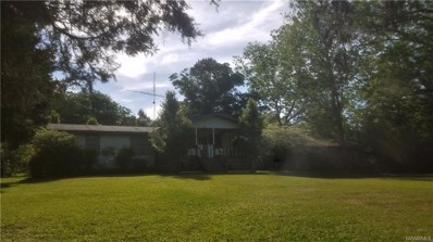 1746 County Road 7 ., Plantersville, AL 36758 - #: 451438