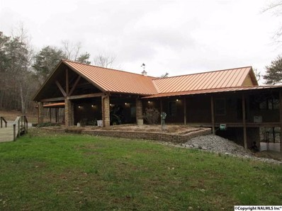 3809 County Road 275, Fort Payne, AL 35967 - #: 1010510