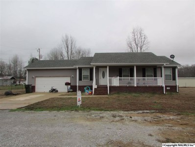 341 Coggins Road, Ardmore, AL 35739 - #: 1035676