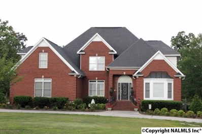 120 Massingill Drive, Rainsville, AL 35986 - #: 1049543