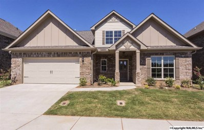 8202 Stillwater Circle, Huntsville, AL 35806 - #: 1050068
