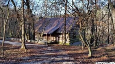 170 County Road 624, Mentone, AL 35984 - #: 1062021