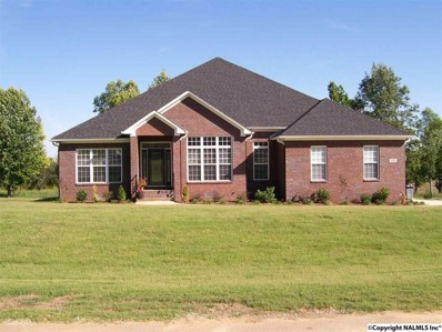 113 North Rim Road, Toney, AL 35773 - #: 1063664
