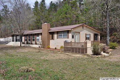 195 County Road 728, Cedar Bluff, AL 35959 - #: 1065059