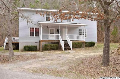 105 County Road 728, Cedar Bluff, AL 35959 - #: 1065151