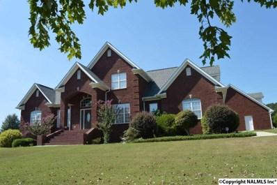 30 Damaris Drive, Albertville, AL 35950 - #: 1065728