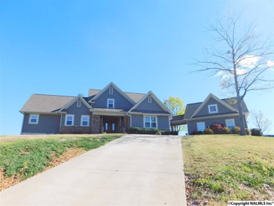 85 County Road 1012, Cedar Bluff, AL 35959 - #: 1066467