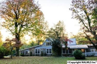 16677 County Road 89, Mentone, AL 35984 - #: 1066481