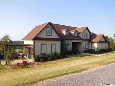 95 County Road 1022, Cedar Bluff, AL 35959 - #: 1066505