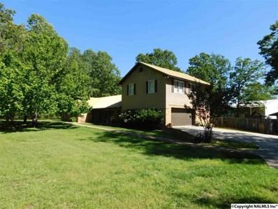 3990 Coosa Street, Cedar Bluff, AL 35959 - #: 1068751