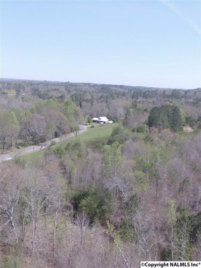 14761 Lay Springs Road, Collinsville, AL 35961 - #: 1069348