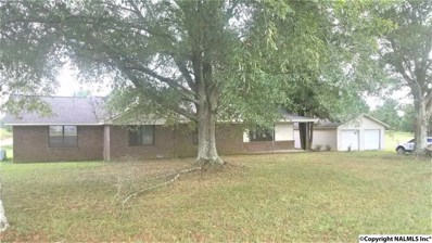 1366 County Road 47, Fyffe, AL 35971 - #: 1069699