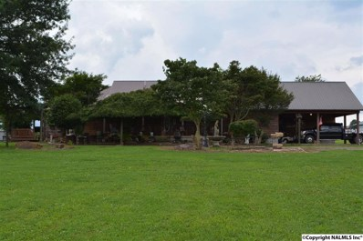 1583 County Road 158, Fyffe, AL 35971 - #: 1072314