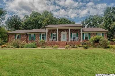 7322 Alabama Highway 79, Guntersville, AL 35976 - #: 1076794