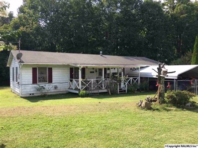 1606 Fischer Road, Fort Payne, AL 35967 - #: 1077105