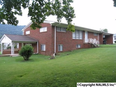 1701 Grand Avenue NW, Fort Payne, AL 35967 - #: 1077849