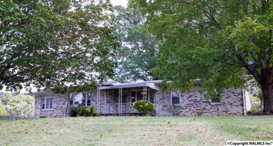 1601 Godfrey Avenue NE, Fort Payne, AL 35967 - #: 1078286