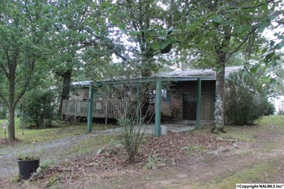 1151 County Road 120, Valley Head, AL 35989 - #: 1079023