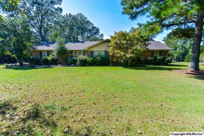 4601 Indian Hills Road, Decatur, AL 35603 - #: 1080142