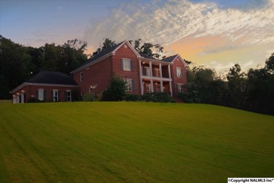 2745 Red Bank Road, Decatur, AL 35603 - #: 1080239