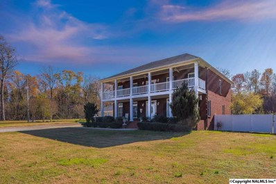 5131 East Upper River Road, Somerville, AL 35670 - #: 1082912
